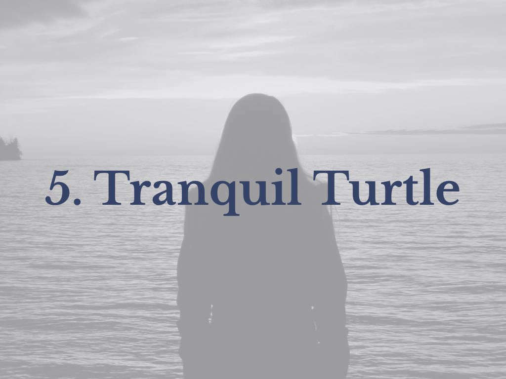 Lesson 5: Tranquil Turtle
