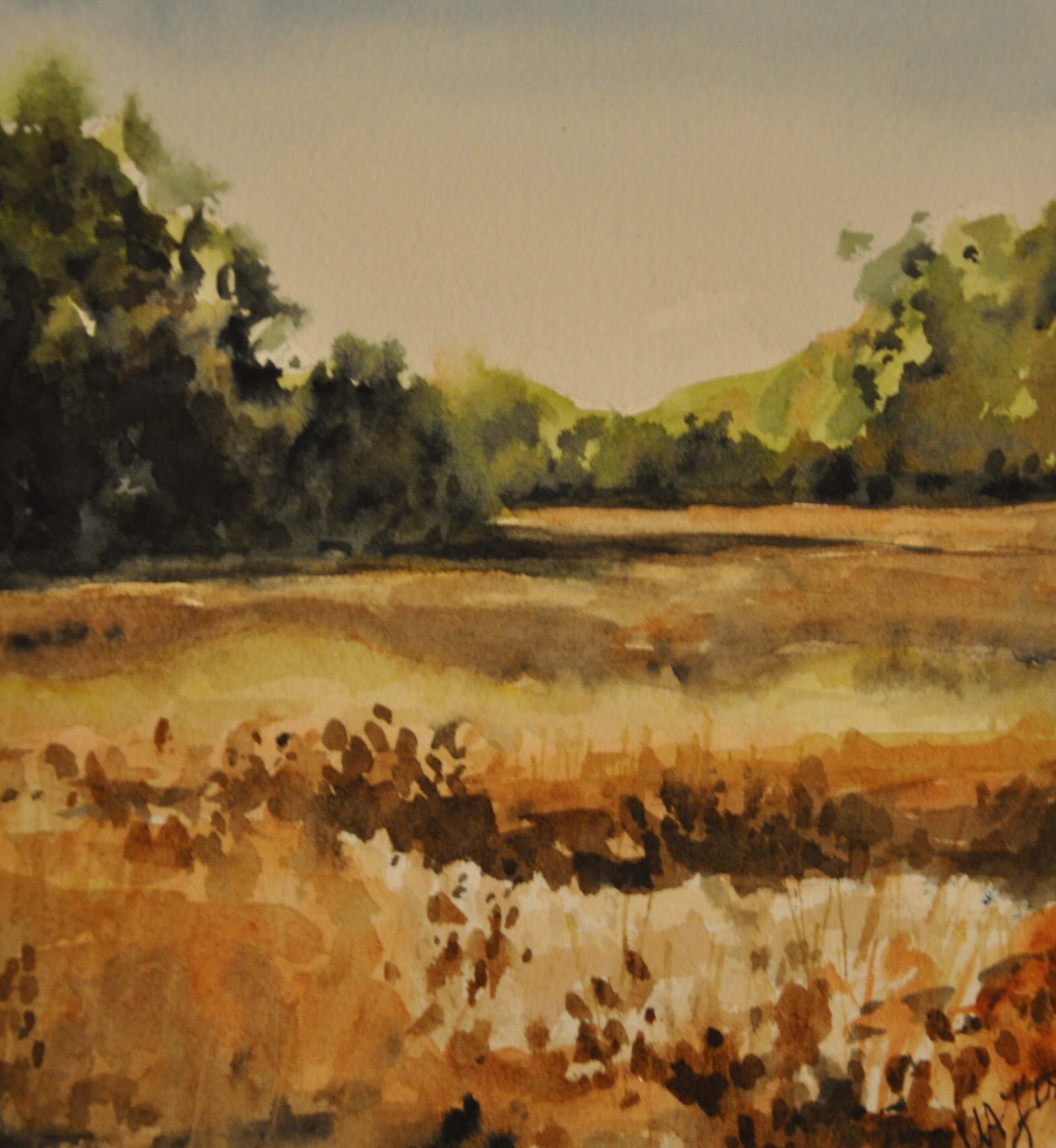 The Homeplace, Watercolor, 2008