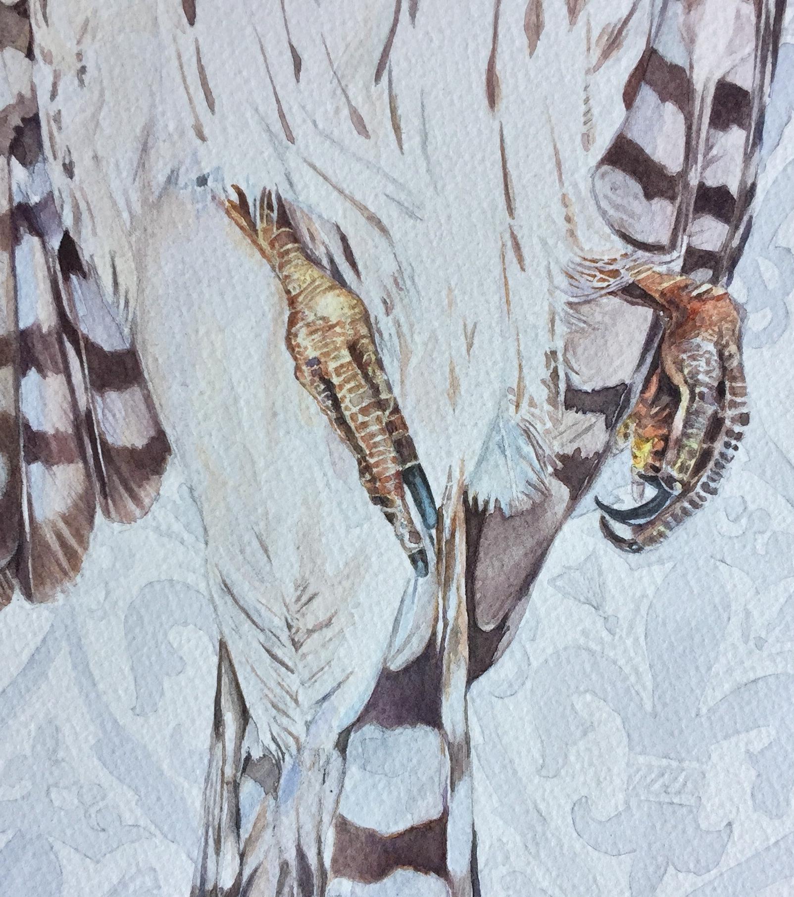 Detail of Marauder