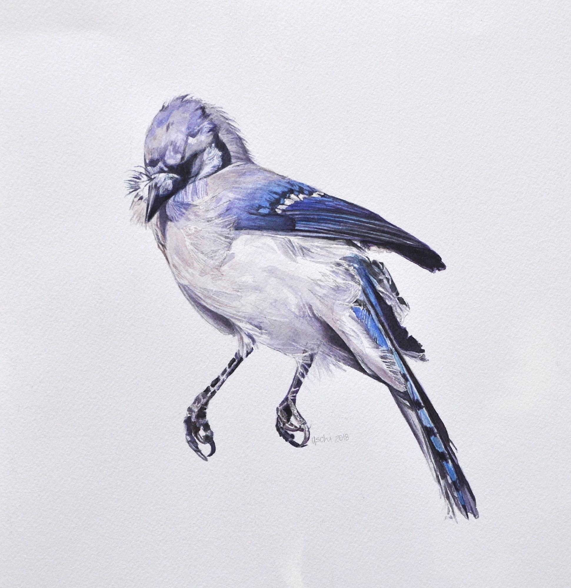 Naked As A Jaybird