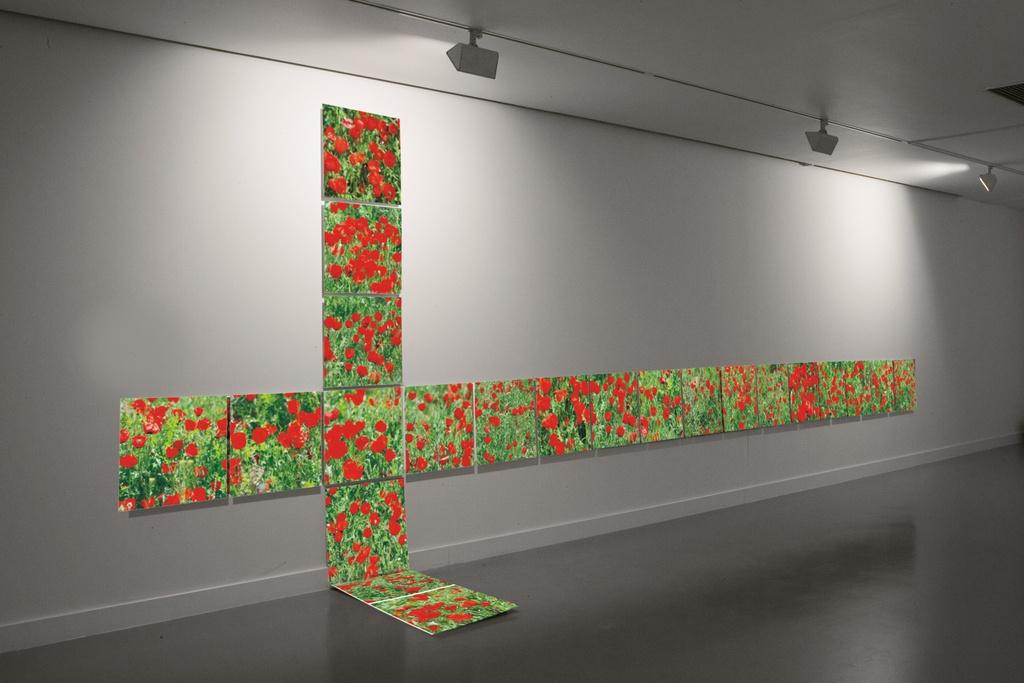 Said Atabekov, Southern Cross, 2009 Installation with 21 C-prints Each: 50 x 50 cm. via  Aspan Gallery .