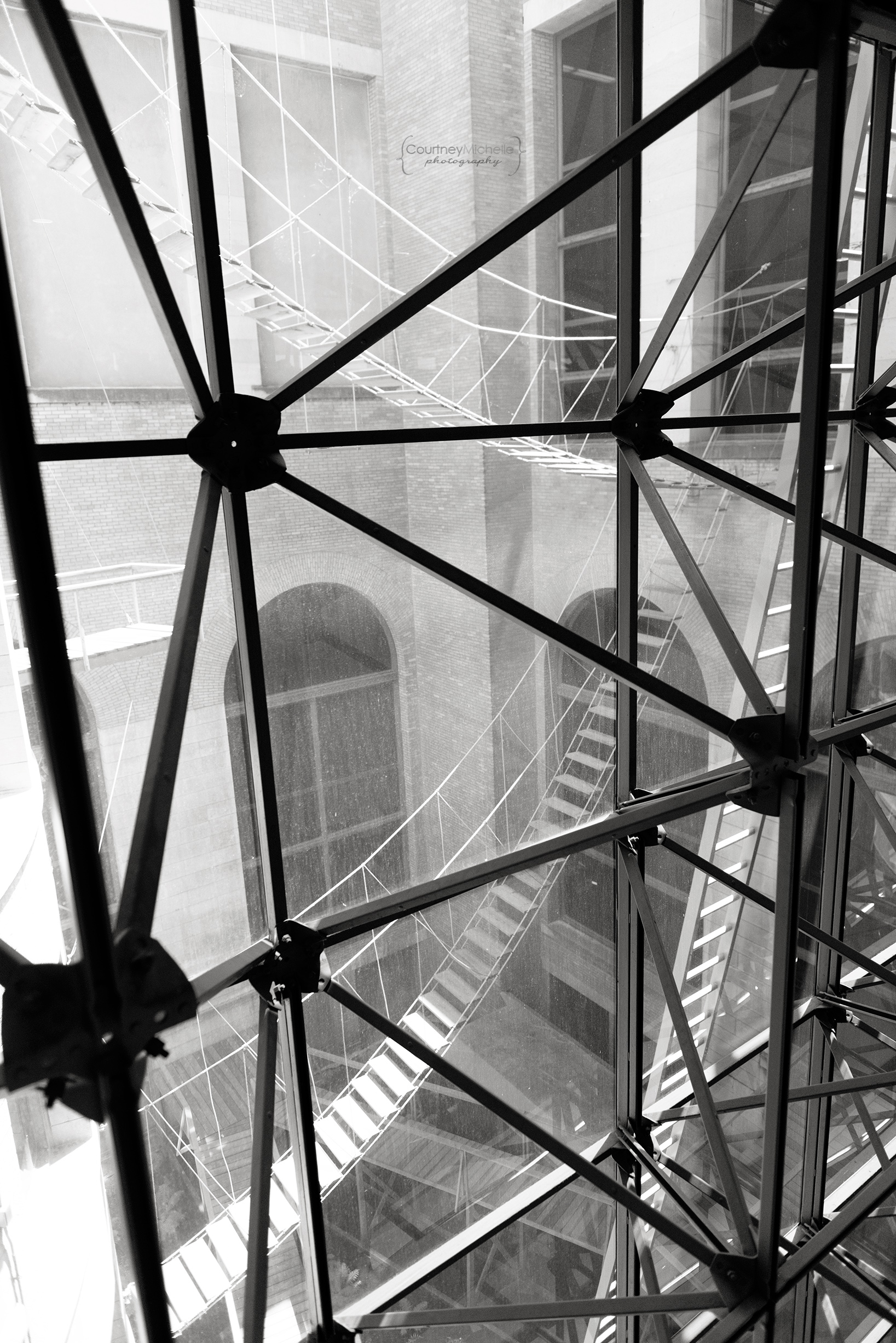 chicago_cultural_center_lines_chicago_street_photography_courtney_laper_photography.jpg