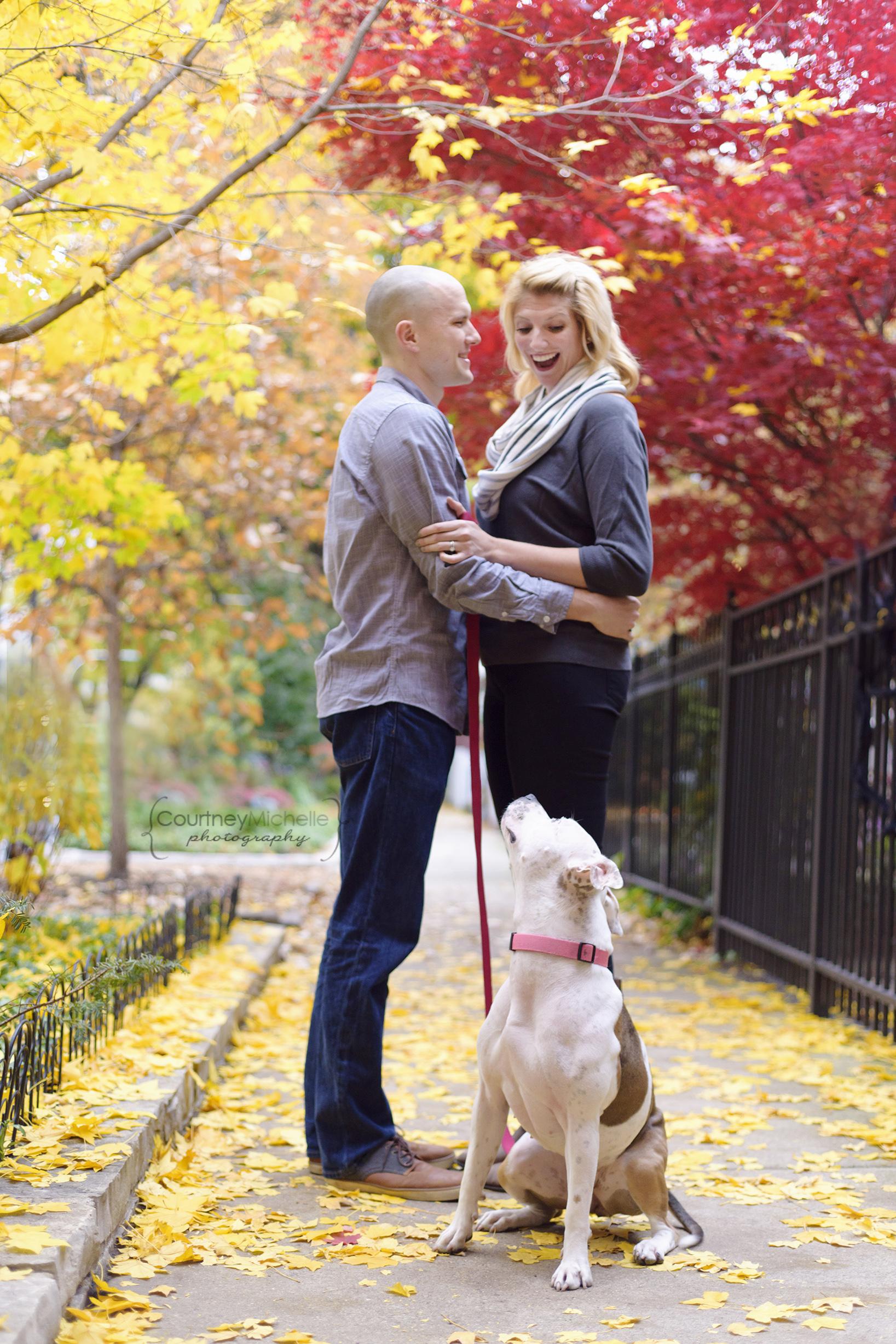 fall-portrait-couple-with-dog©COPYRIGHTCMP-howes-seske-5925.jpg