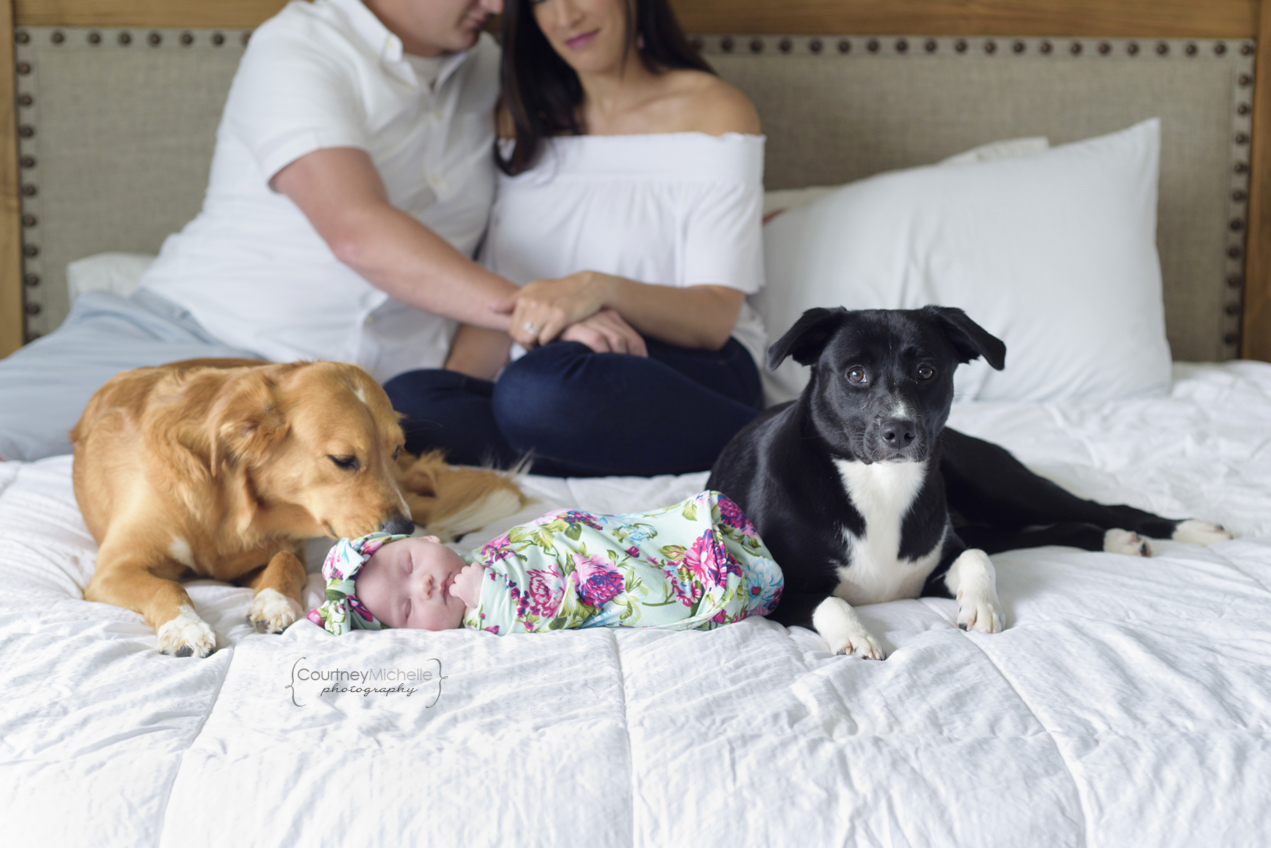 chicago-newborn-photographers-courtney-laper-lifestyle-session-newborn-on-bed-with-dogsCOPYRIGHTCMP-Camille20190705-2673-19.jpg