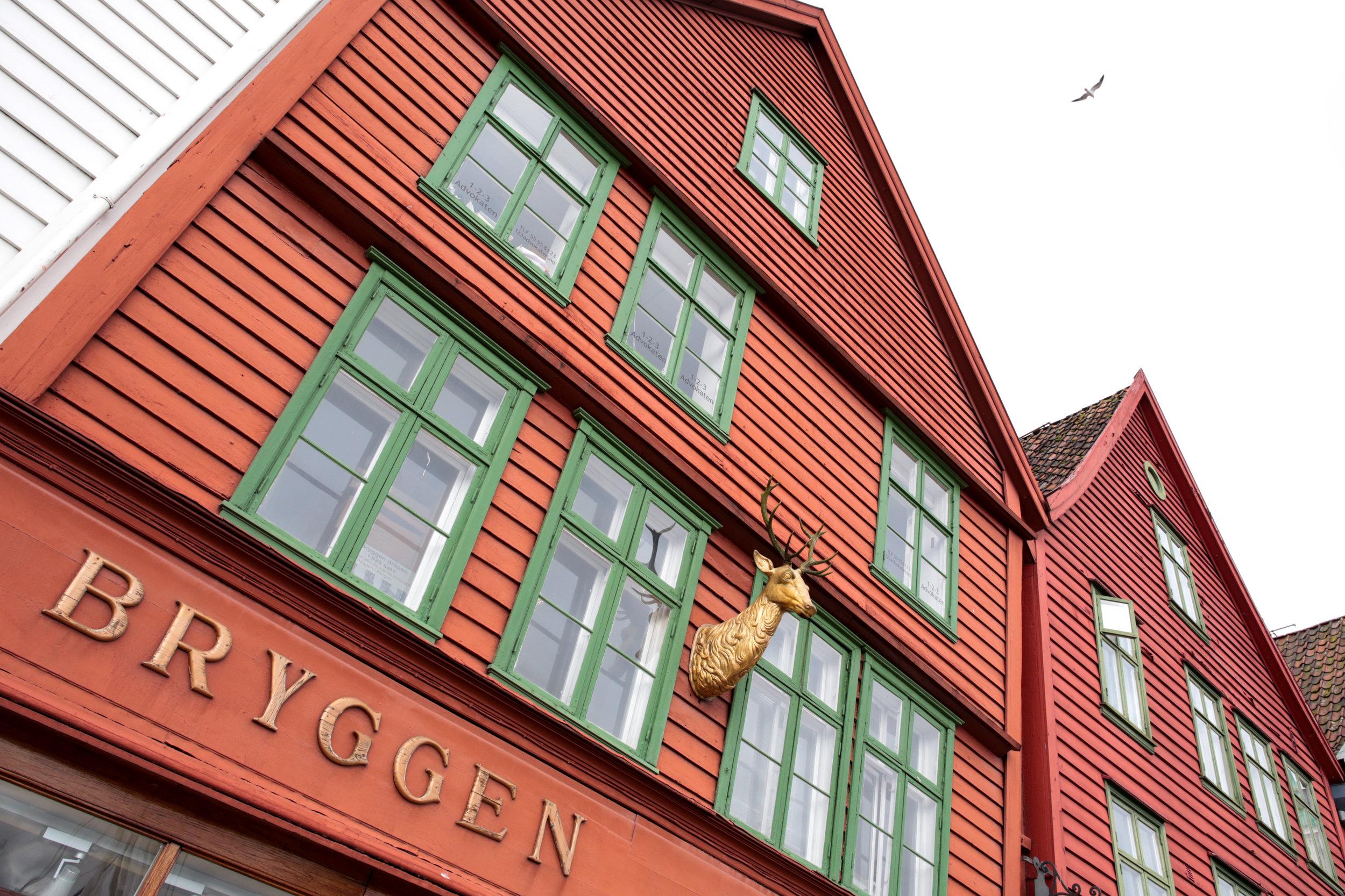Norway-38.jpg