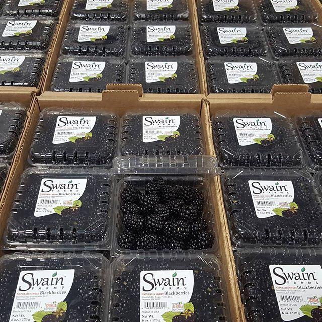 Sweet Georgia blackberries. #swainfarms, #blackberries
