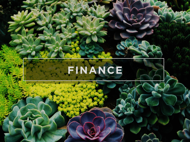 FC_WEB_MINISTRY_800X600_FINANCE.jpg