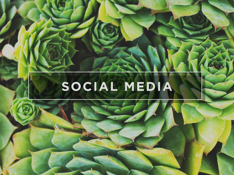 FC_WEB_MINISTRY_800X600_SOCIAL_MEDIA.jpg