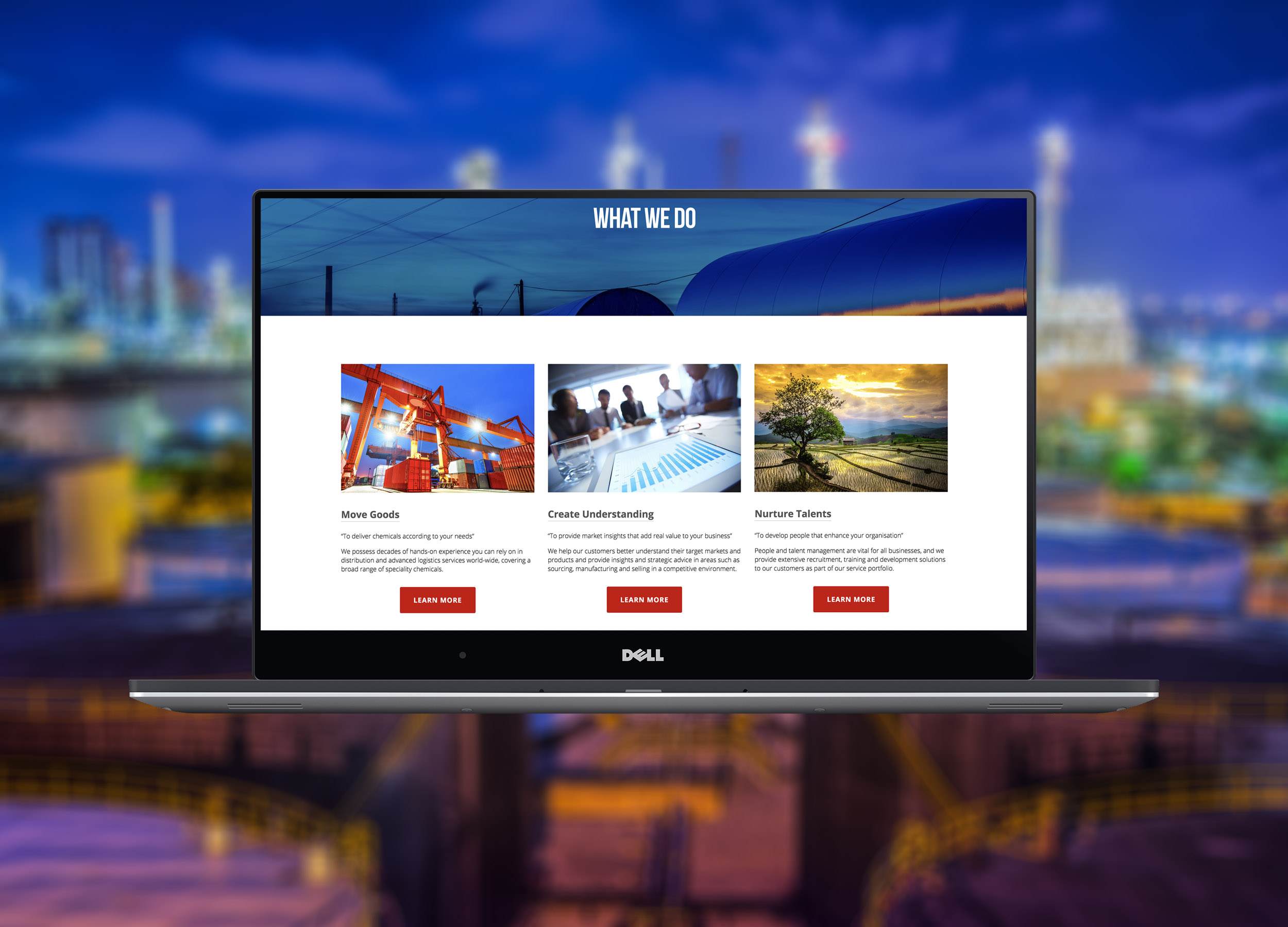 He-Ro Chemicals Website What We Do Page Design