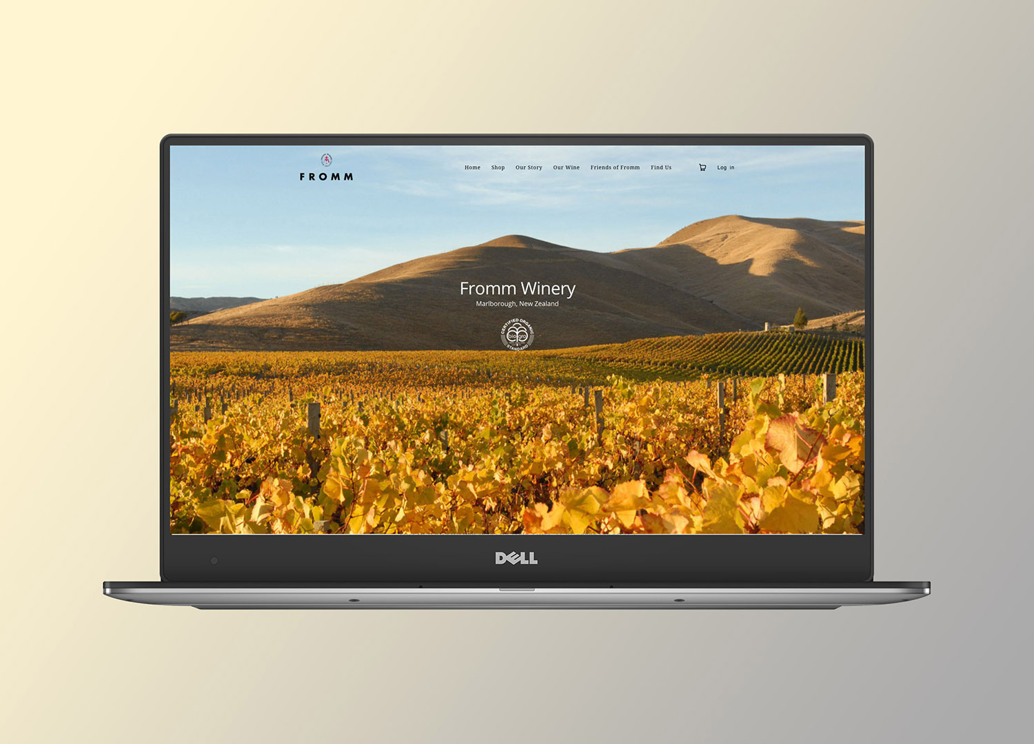 Fromm_dell-xps13-home.jpg