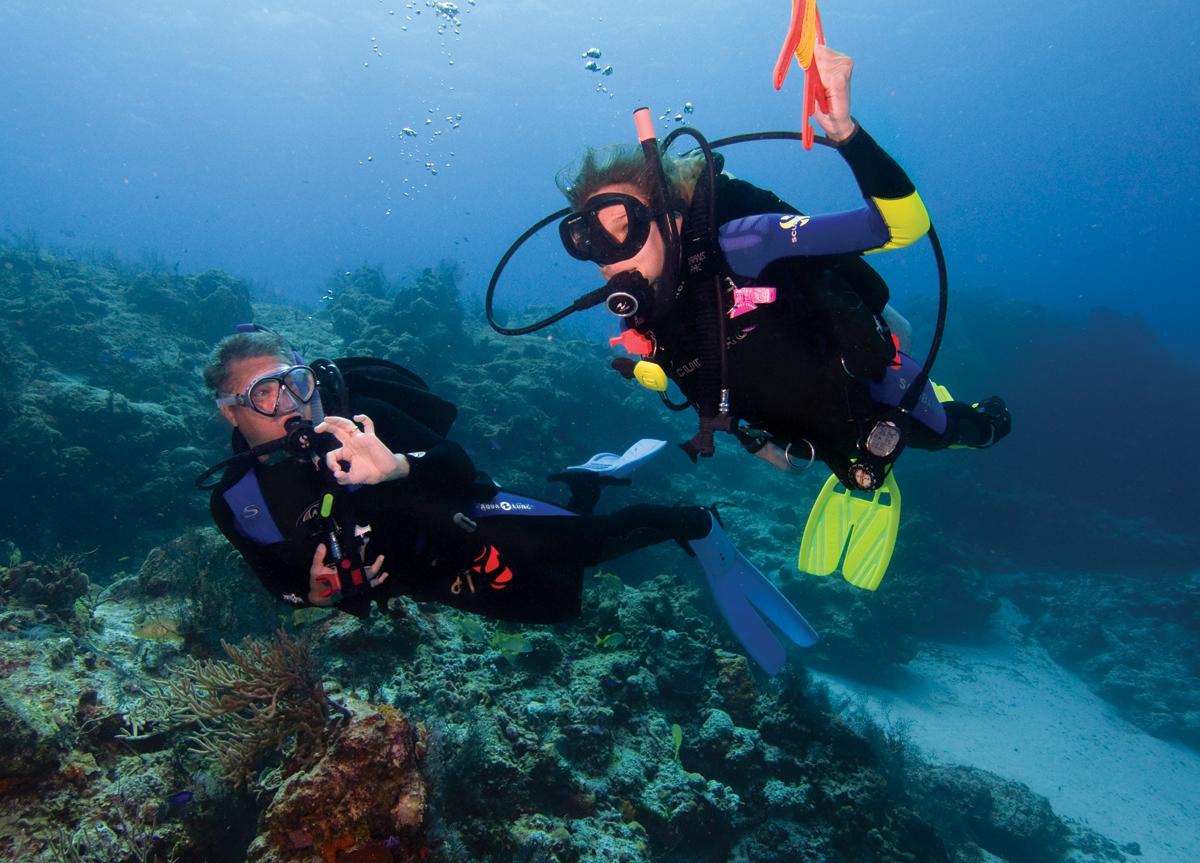 padi-scuba-diving-careers