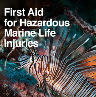 DAN First Aid for Hazardous Marine Life Injuries
