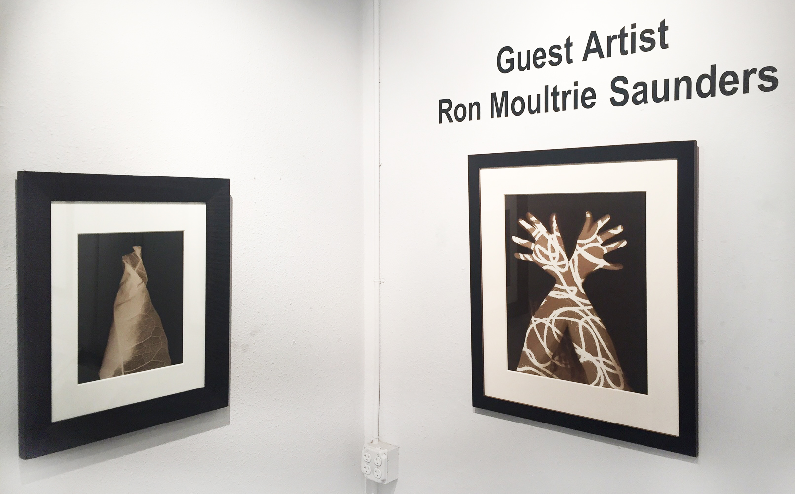 Ron Moultrie Saunders Installation 2.JPG