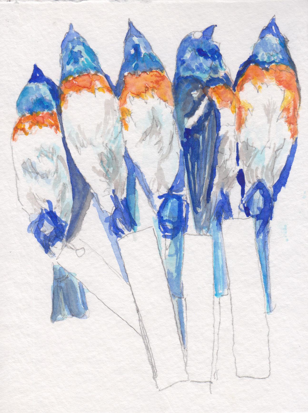 Dunn_bluebirds_watercolor.jpg