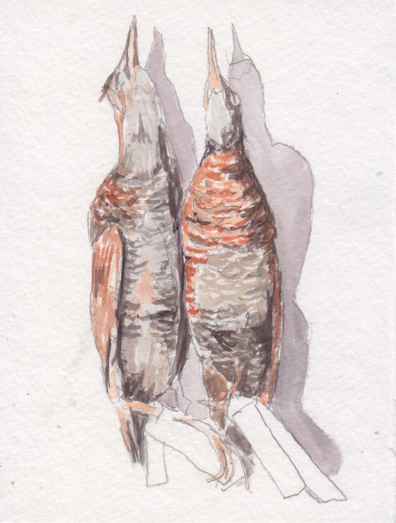 Dunn_sandpipers_watercolor.jpg