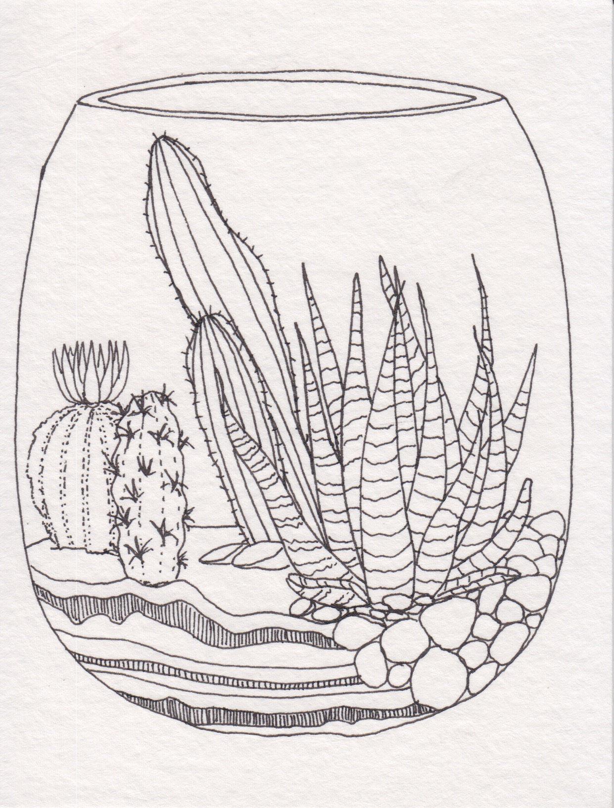 Dunn_Terrarium Drawing_03.jpg
