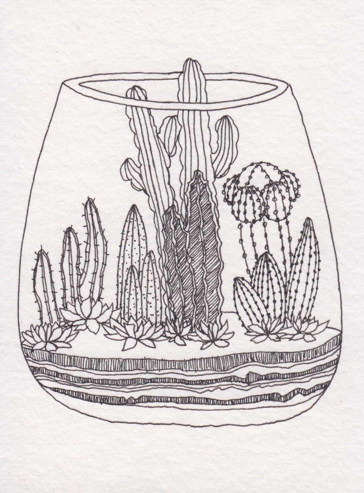 Dunn_Terrarium Drawing_07.jpg