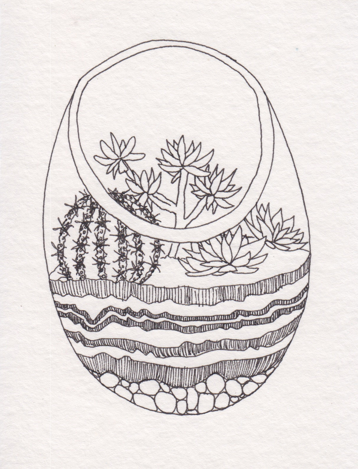 Dunn_Terrarium Drawing_08.jpg