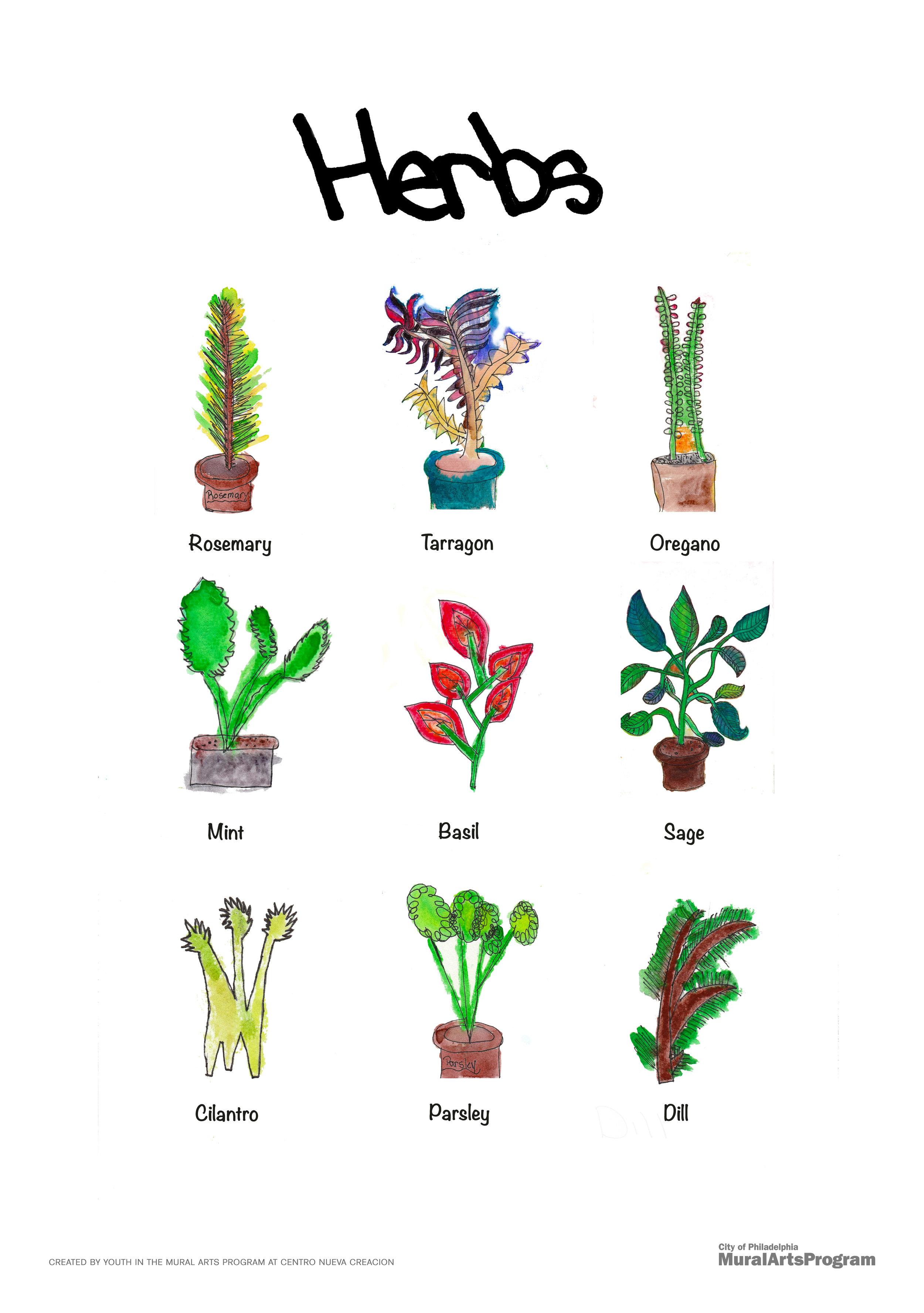 Herb_poster.jpg