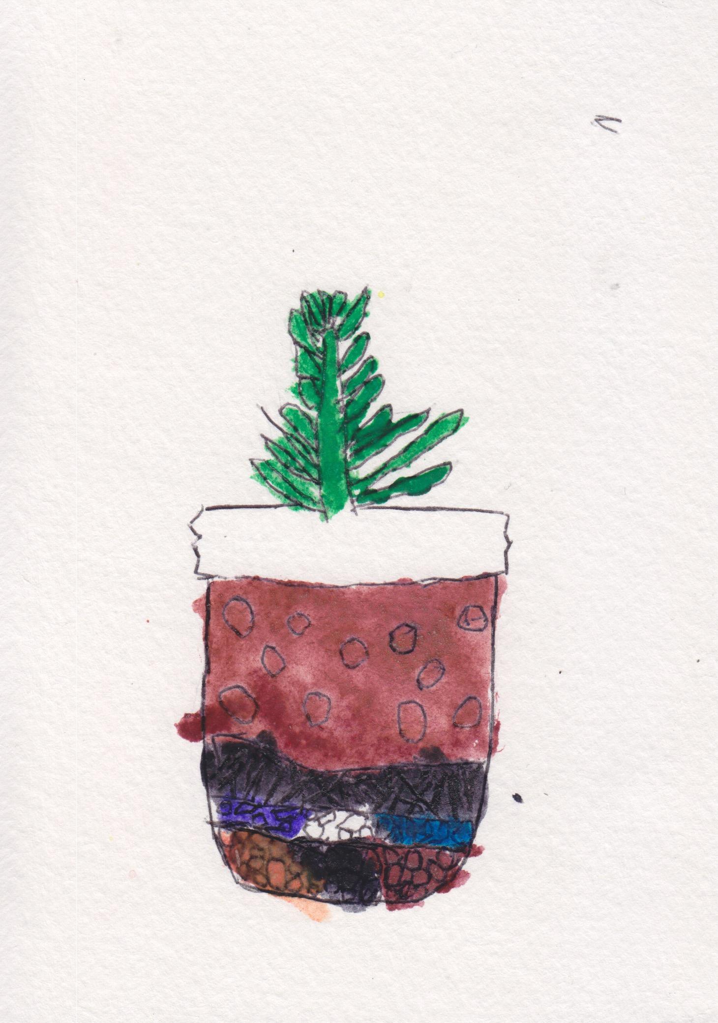 centro_watercolor terrarium_JulianPerez02.jpeg