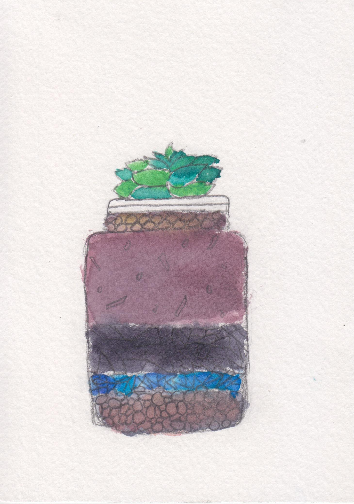 centro_watercolor terrarium_MariaRamos.jpeg