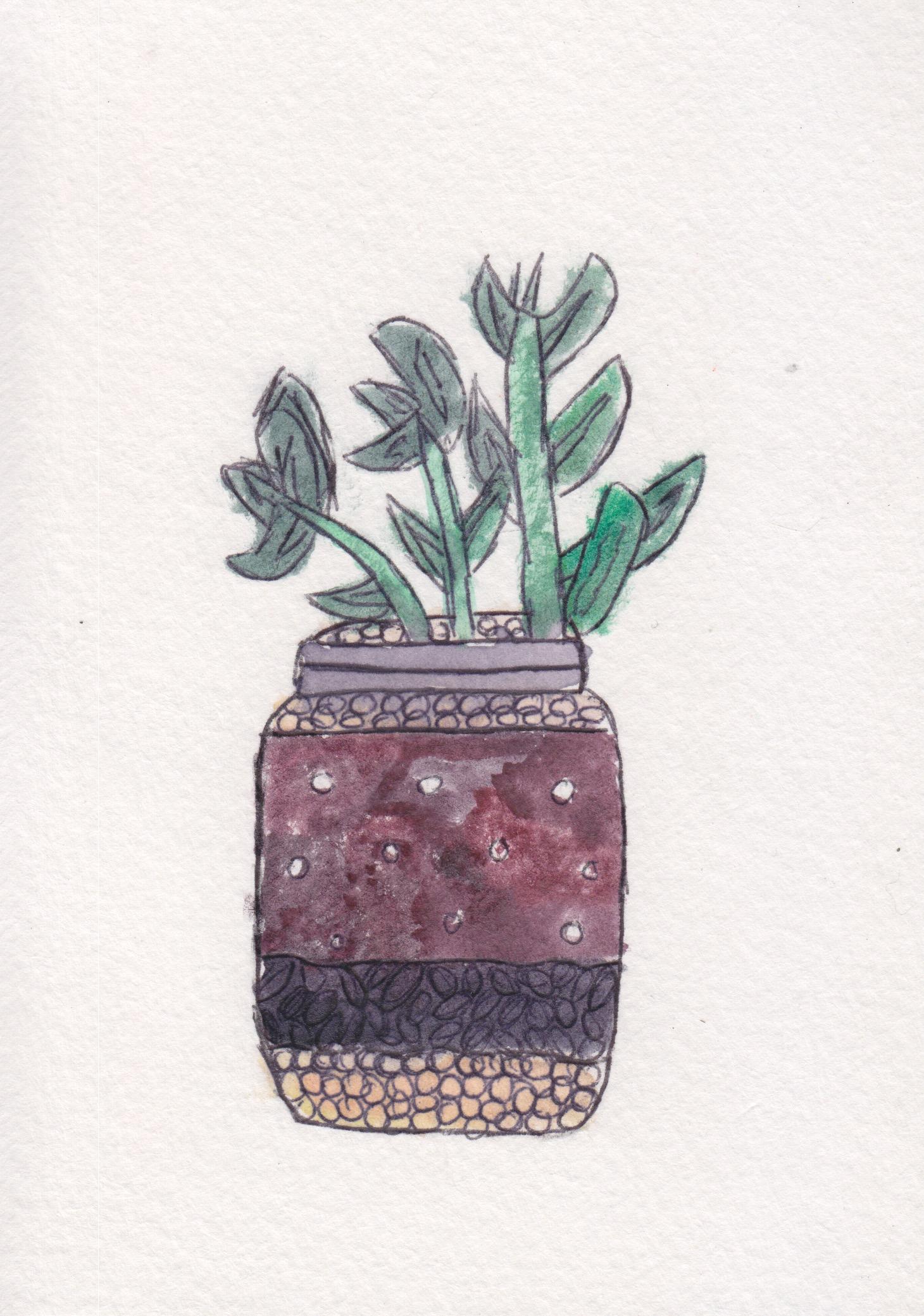 centro_watercolor terrarium_NicoleSaez.jpeg
