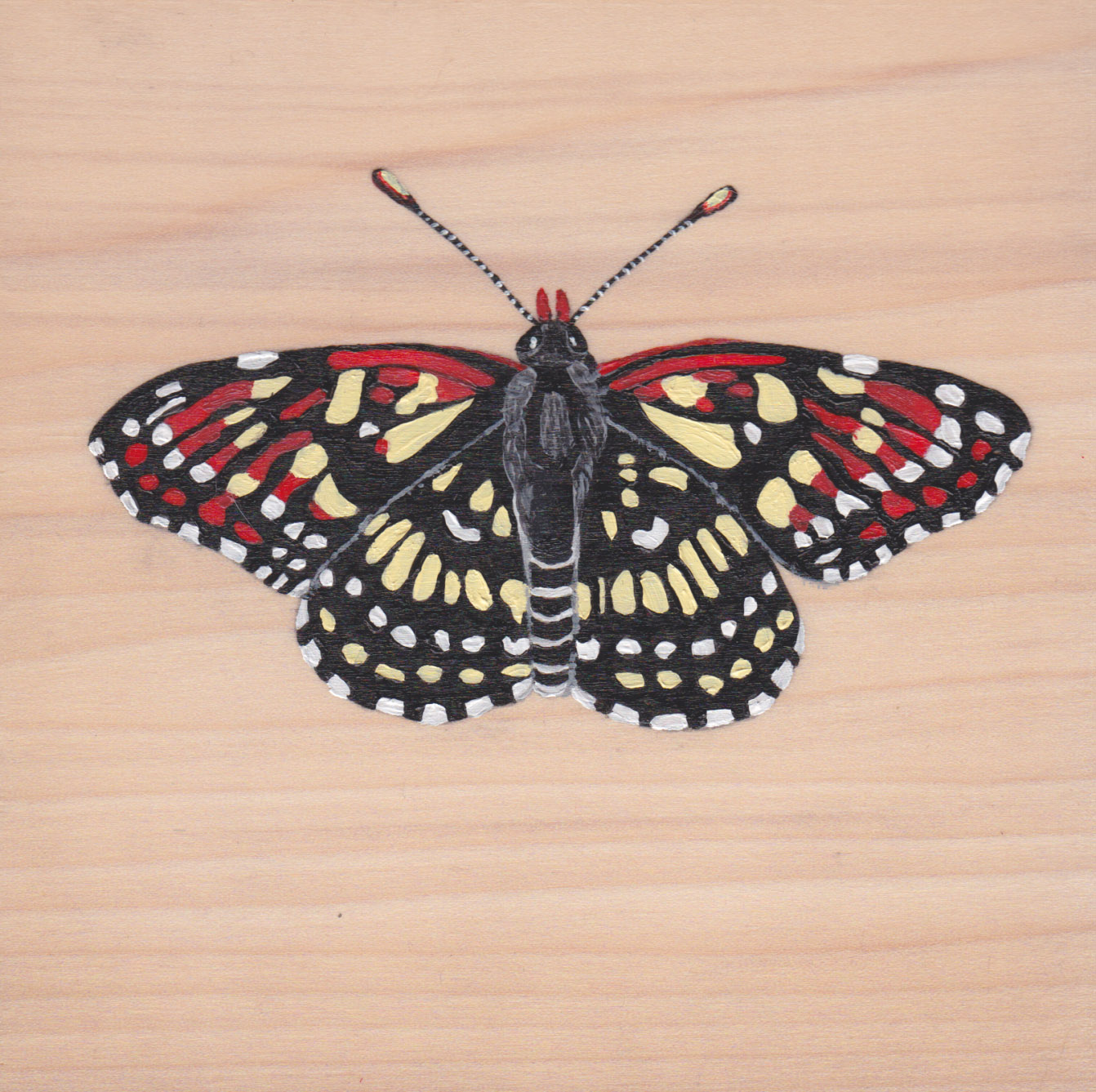 Chlosyne Leanira Wrightii Butterfly_Painting on wood_01.jpg