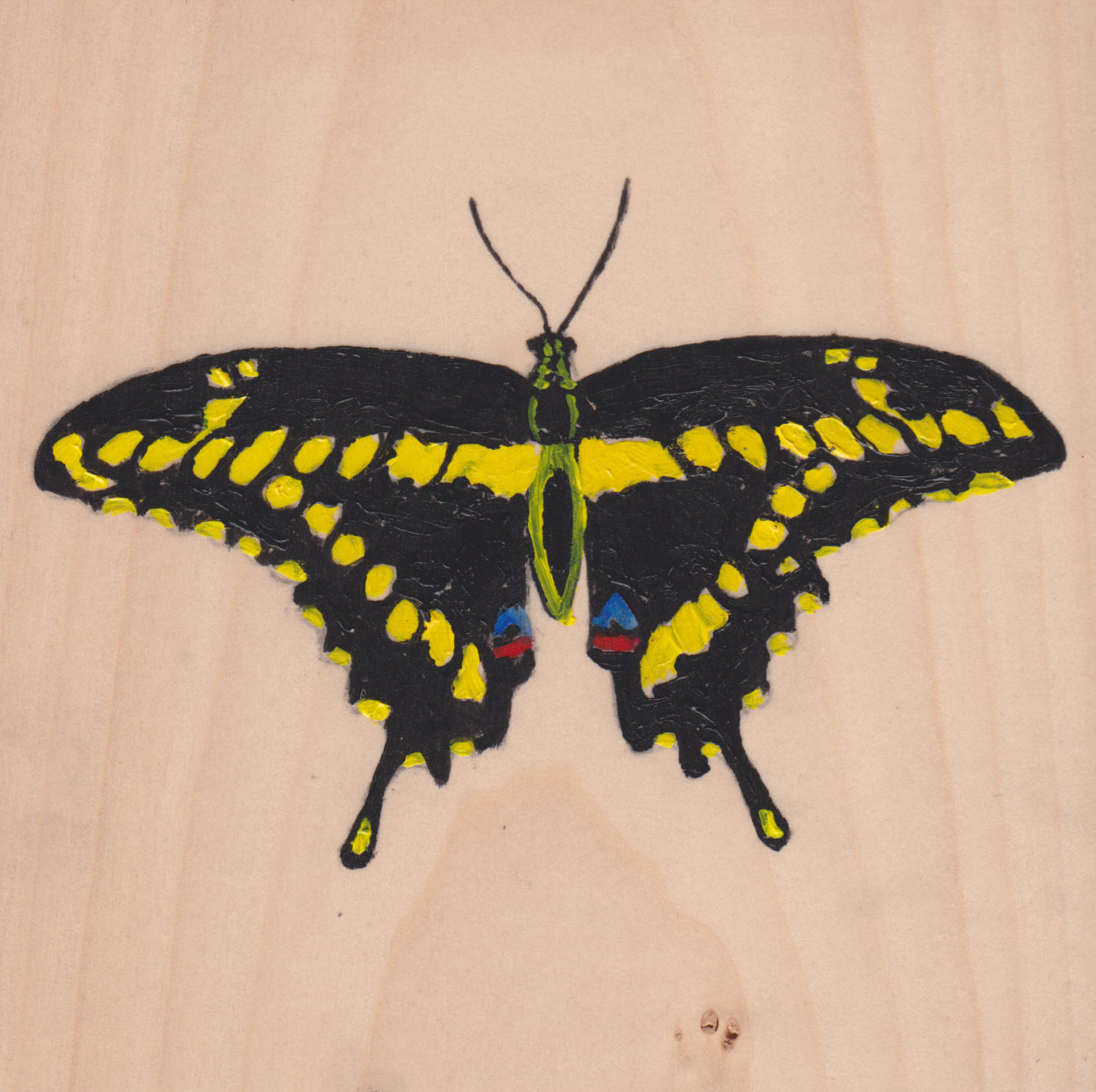 Papilio Cresphontes Butterfly_Painting on wood_01.jpg