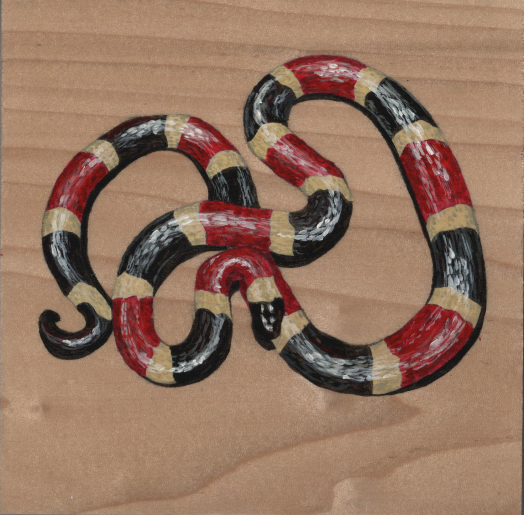 Micruroides Euryxanthus Snake_Painting on wood_01.jpg