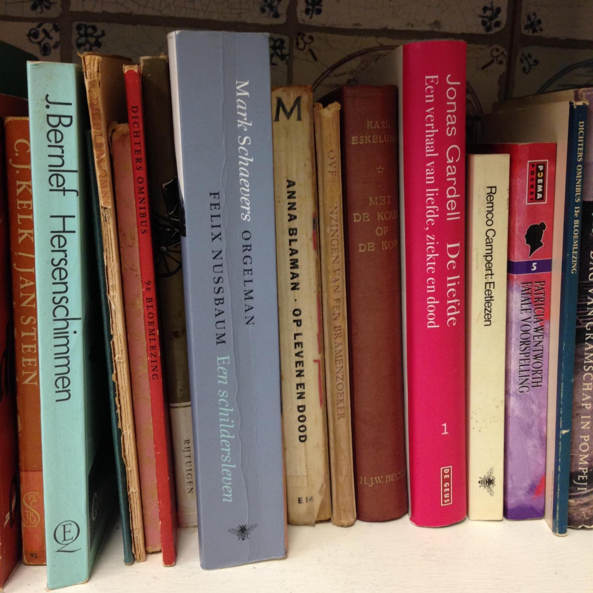 Enjoy our Little Dutch Free Library! Bring a book, take a book