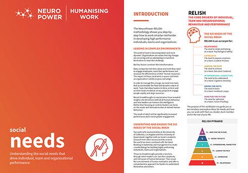 NPG-Socialneeds-RELISH-workbook.jpg