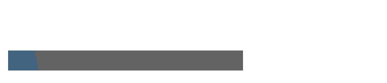 Bernardi's logo.png