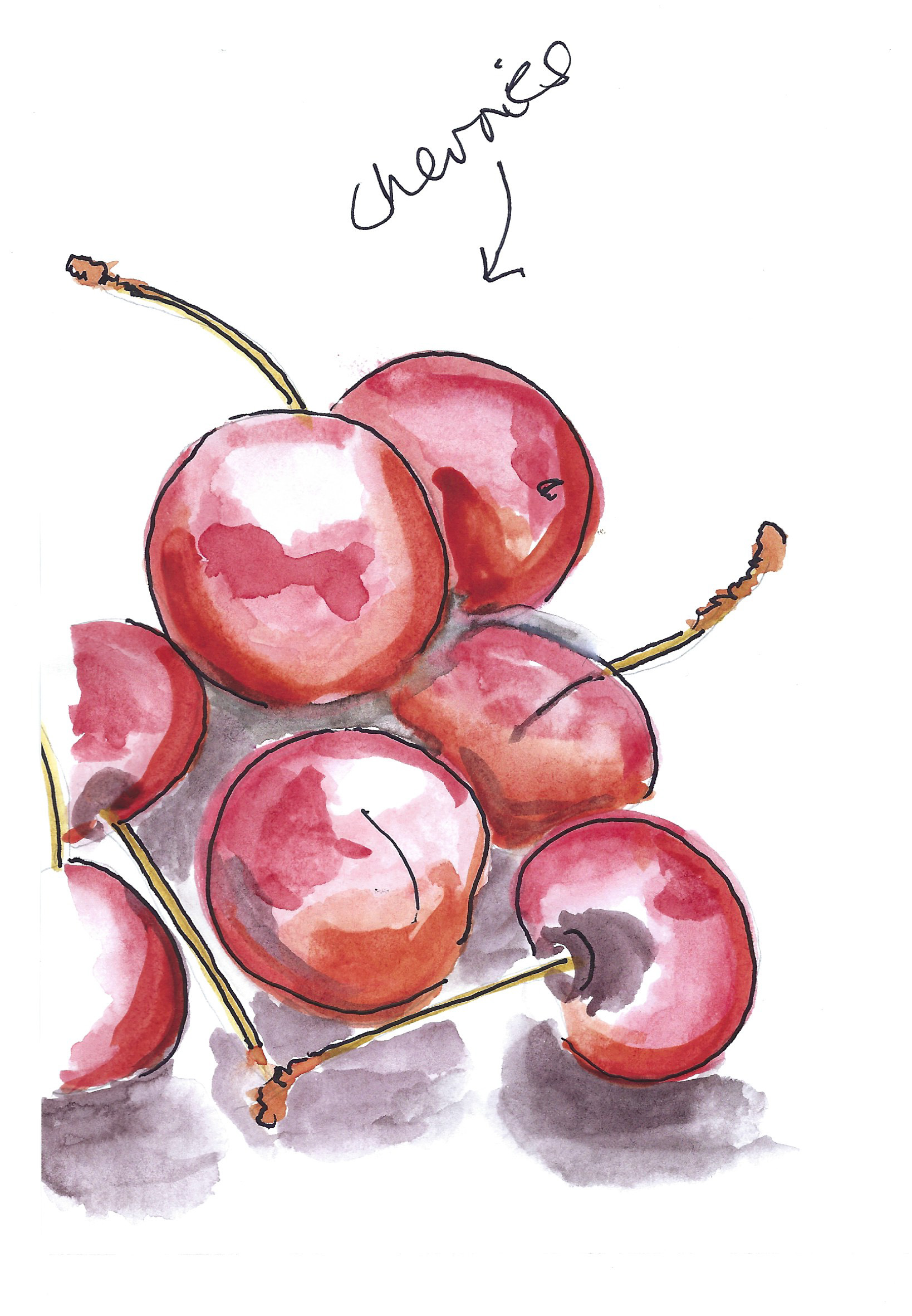 cherries scan.jpg
