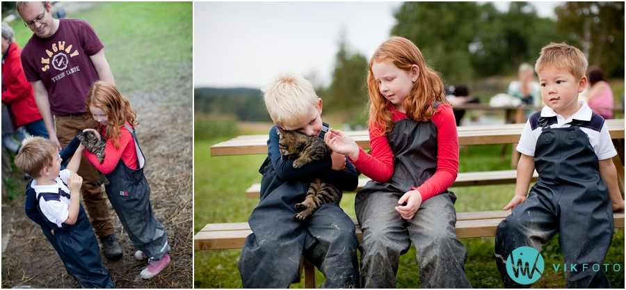 barn-kattepus-pusekatt.jpg