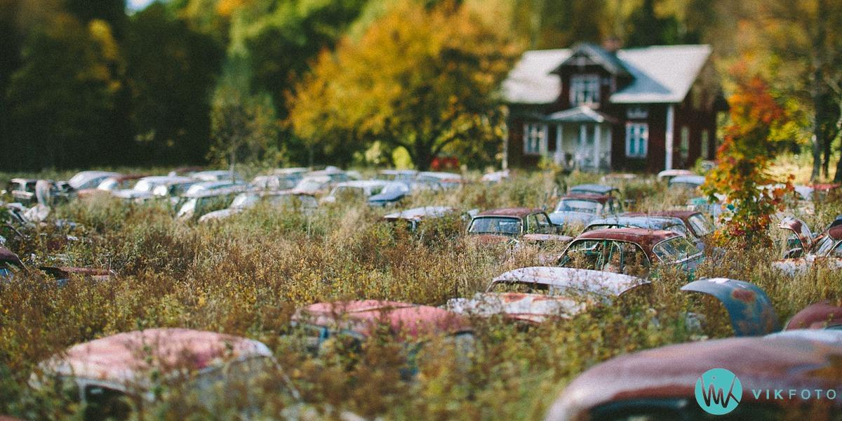 01-vikfoto-bilkirkegård-bilvrak-vrakpant-rusten-bil