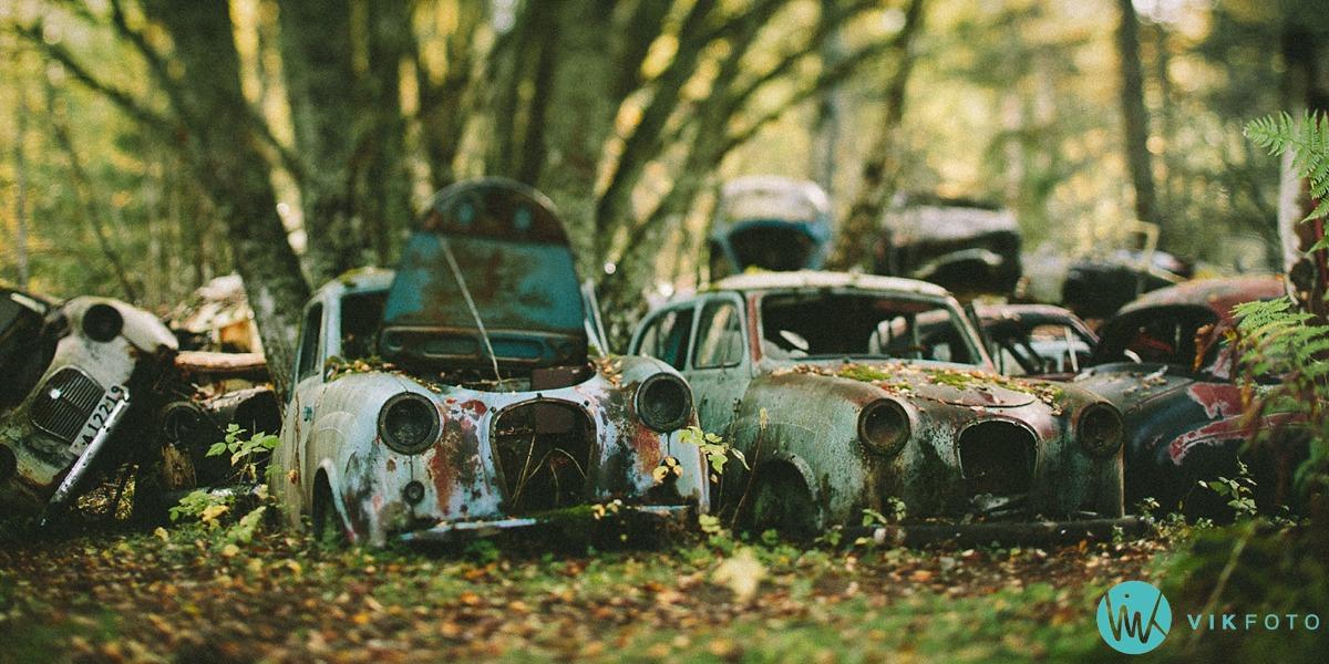 12-vikfoto-bilkirkegård-bilvrak-vrakpant-rusten-bil