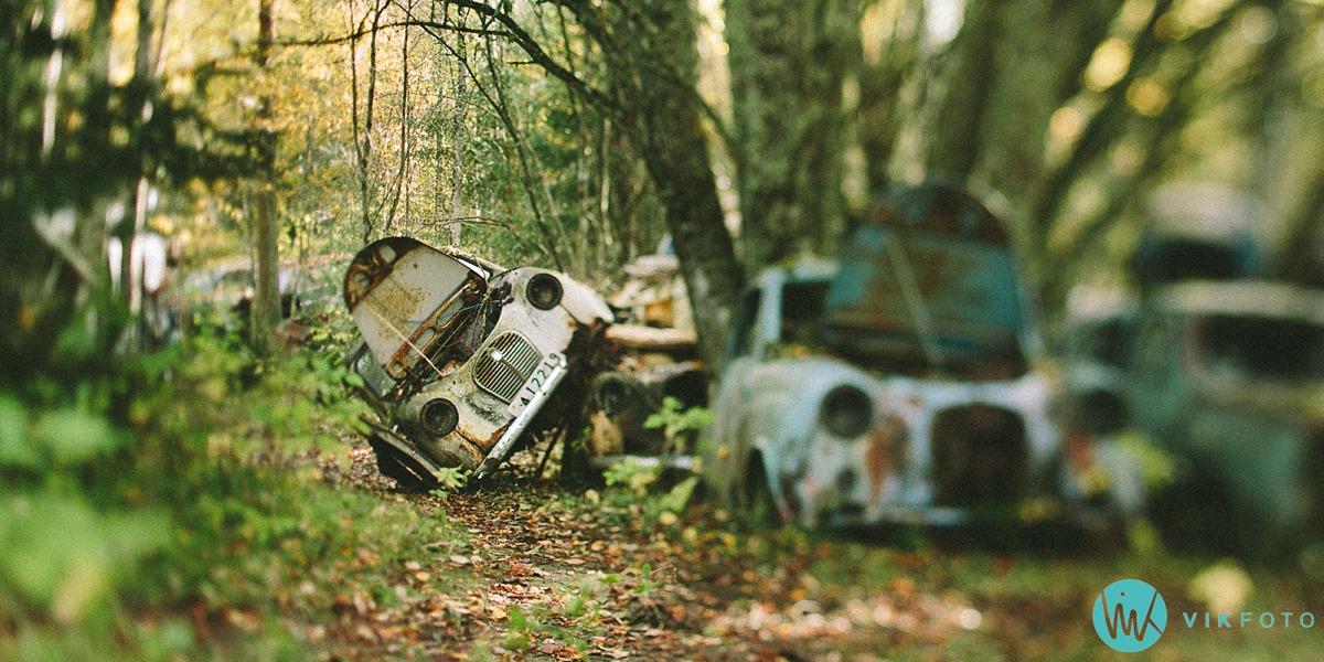 20-vikfoto-bilkirkegård-bilvrak-vrakpant-rusten-bil