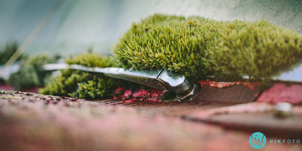 30-vikfoto-bilkirkegård-bilvrak-vrakpant-rusten-bil