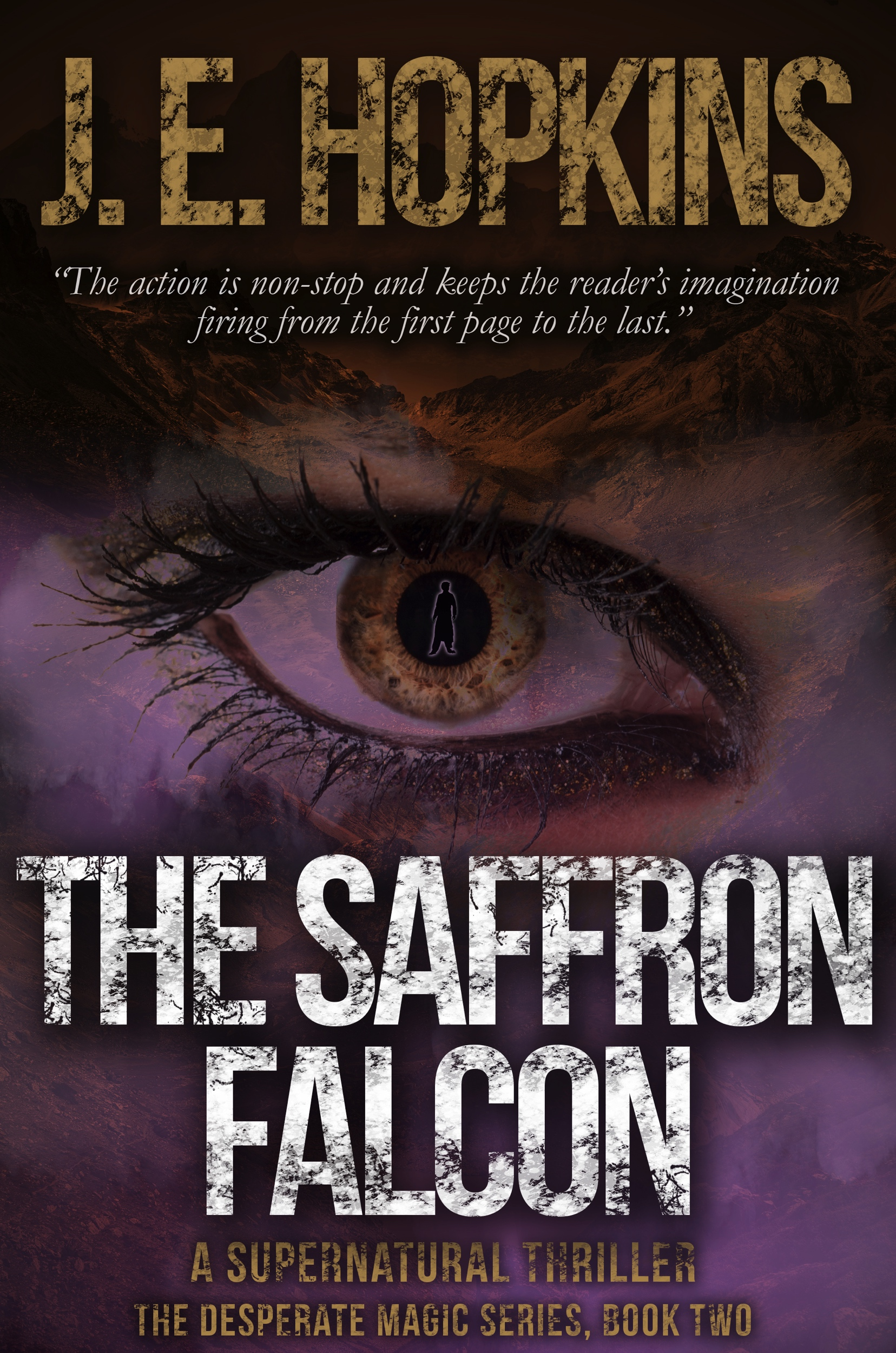 The-Saffron-Falcon-Kindle.jpg