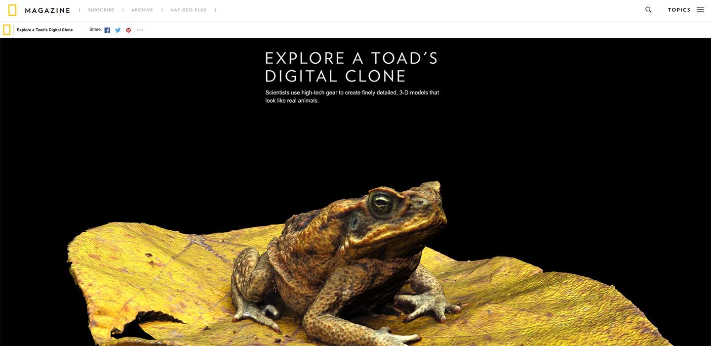 Toad digital clone.jpg