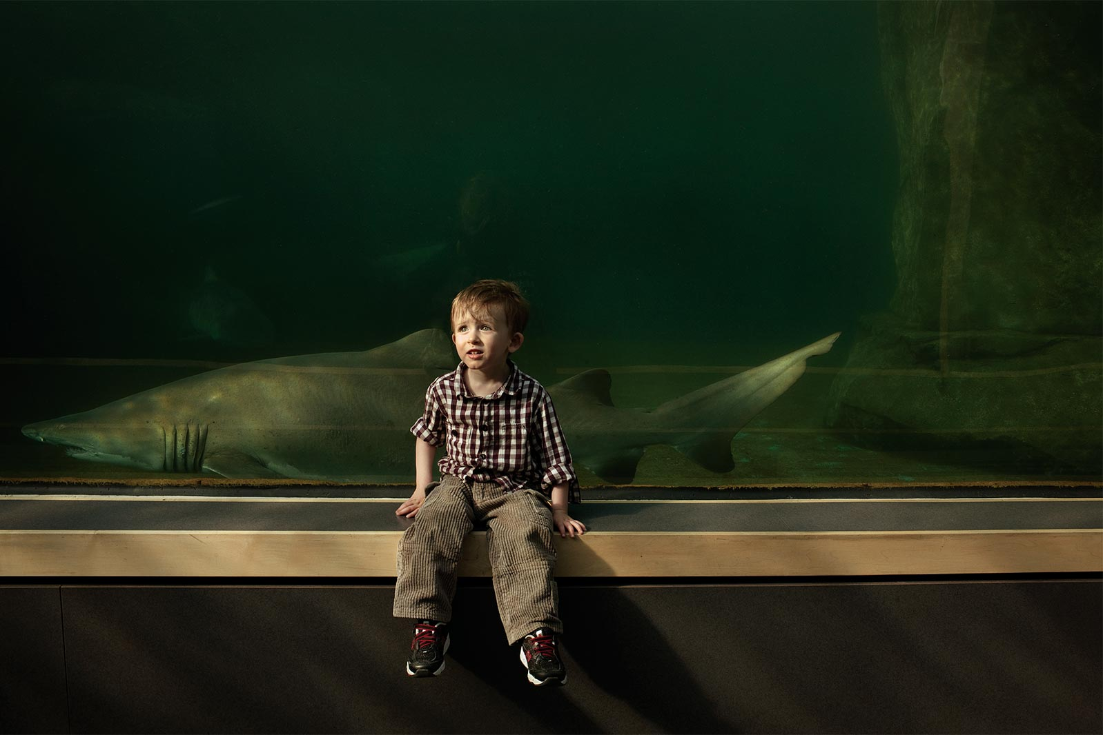 """Lange's son Jackson, in the natural light of an aquarium. """"Powerful human storytelling demands vulnerability. The picture can't be perfect or overproduced. That's not to say it can't be thoughtful and high quality, but I'm very much into things that feel authentic and human and real."""""""