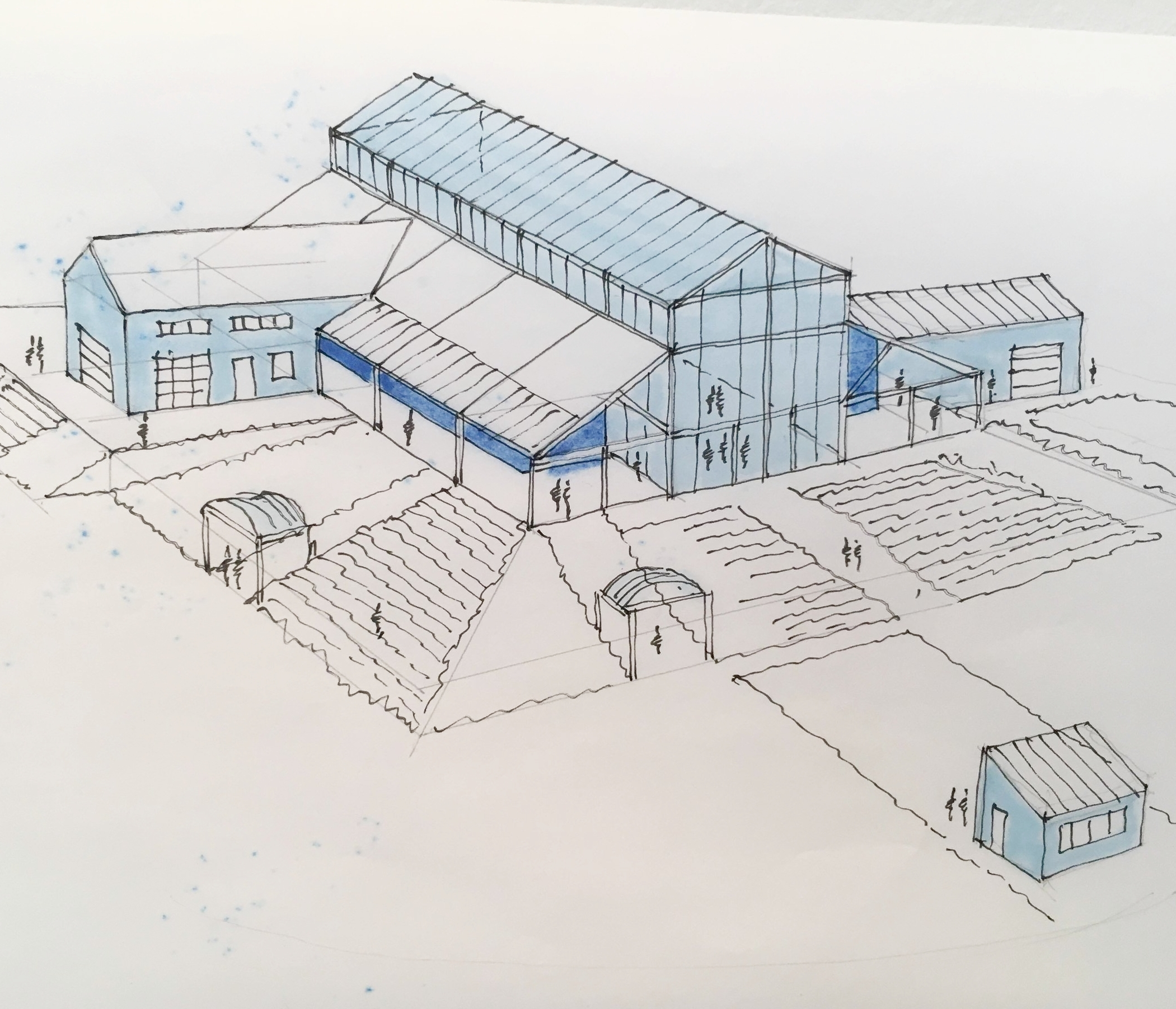 Plans for a Vermont Botanical Center of Excellence.