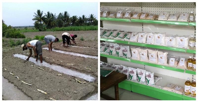 Left: Organic farming; Right: Organic produce at the Organic Mandya store Source:   Facebook