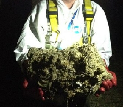 A chunk of the fatberg extracted from London's sewers. Source: Wiki Commons.