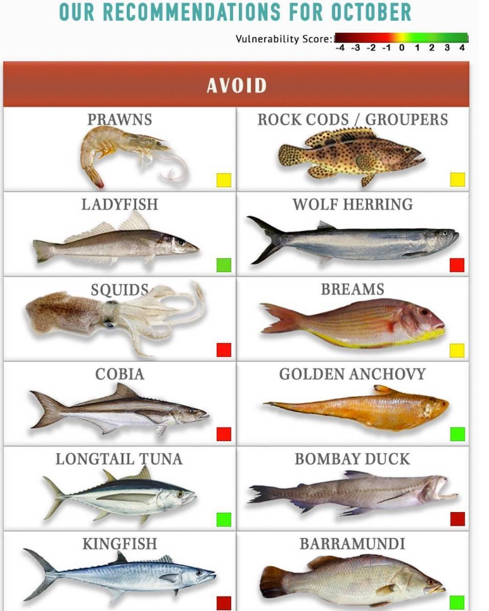 Know Your Fish helps people make responsible and ocean-friendly seafood choices. Image: Facebook/ Know Your Fish