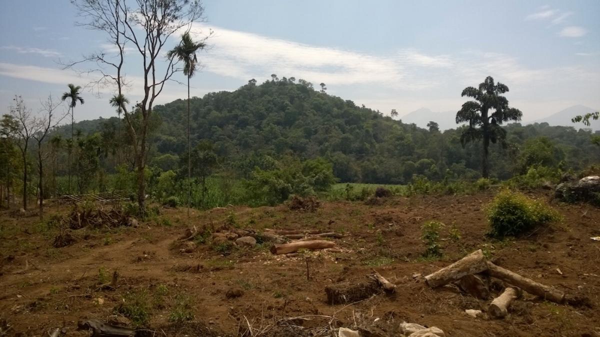 Landscape destruction in Wayanad