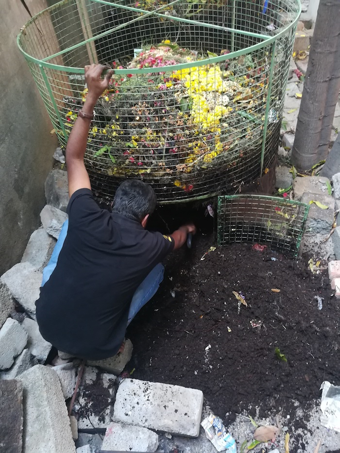 Harvesting leaf compost from a composter installed on temple premises. Image: Courtesy Vasuki Iyengar