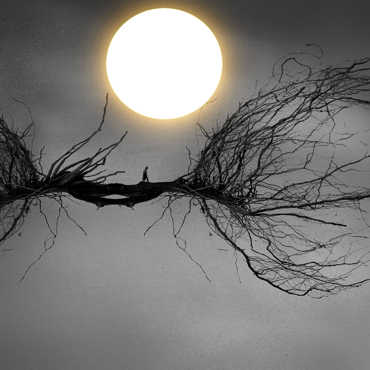 sun loves moon_2small.jpg