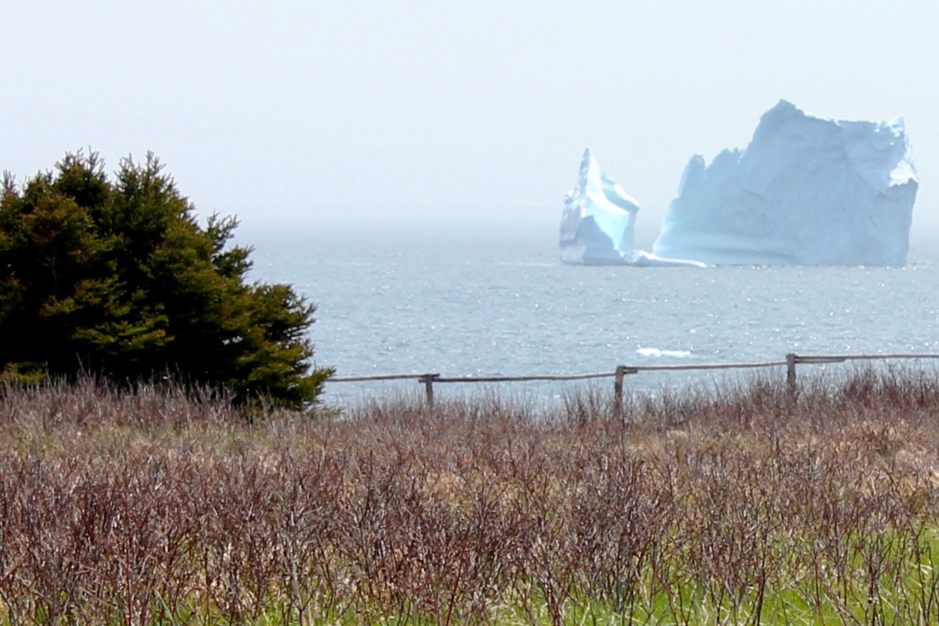 Iceberg in June.jpg