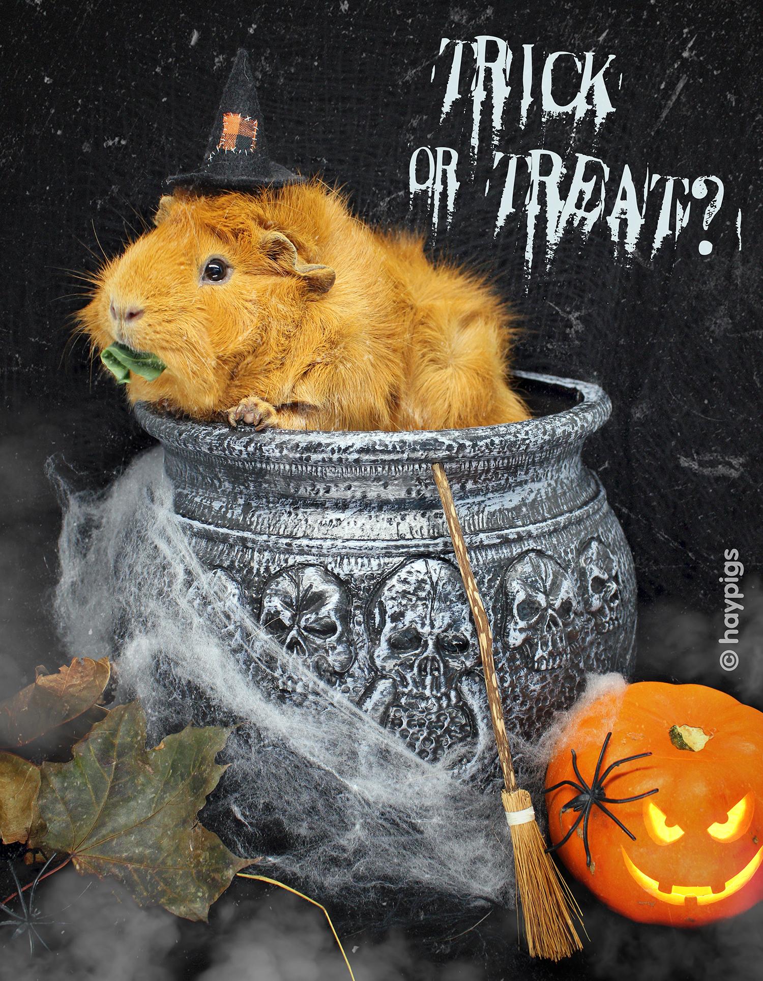 Halloween_Crunchie.jpg